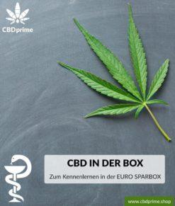 CBD zum Kennenlernen in der EURO SPARBOX