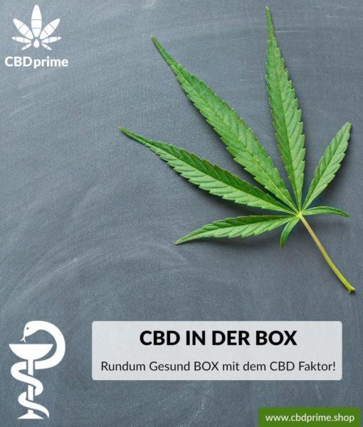 Rundum-Gesund BOX mit CBD Faktor. Exklusiv bei CBDprime!