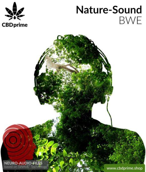 neuro-audio-files-swave